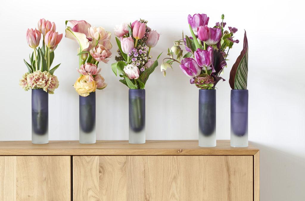 Start het jaar bloeiend met Tulpen
